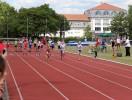 2014-07-06 Springermeeting